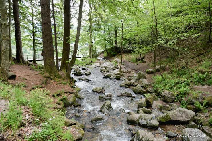 Todtnauer Wasserfall: balade à conseiller en Forêt Noire du Sud