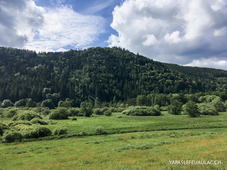 Tourbière Urbès. Balade nature dans les Hautes Vosges