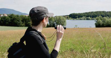 Balade nature au lac de MIchelbach en Alsace