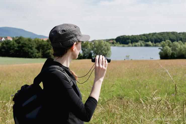Balade nature autour de Mulhouse - au lac de MIchelbach en Alsace
