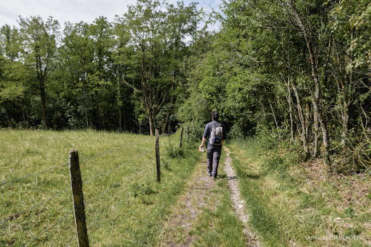 Balade nature autour de Mullhouse - idées sur le blog Yapaslefeuaulac.ch - escapades Alsace