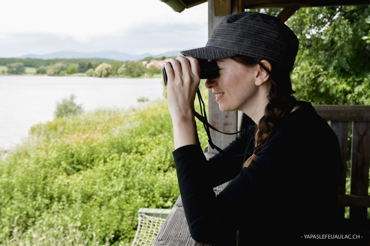 Observatoire à oiseaux lac de Michelbach - Balade nature autour de Mulhouse - Blog yapaslefeuaulac - Escapades en Alsace