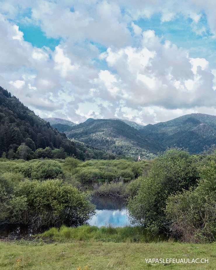 Observation nature au See d'Urbès dans les Hautes Vosges