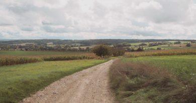 Balade nature autour de Mulhouse dans le Sundgau, autour de la Forêt du Talrain, au départ de Walheim