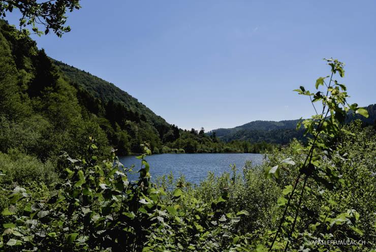 Le lac de Sewen, tourbière issue d'un ancien site glaciaire