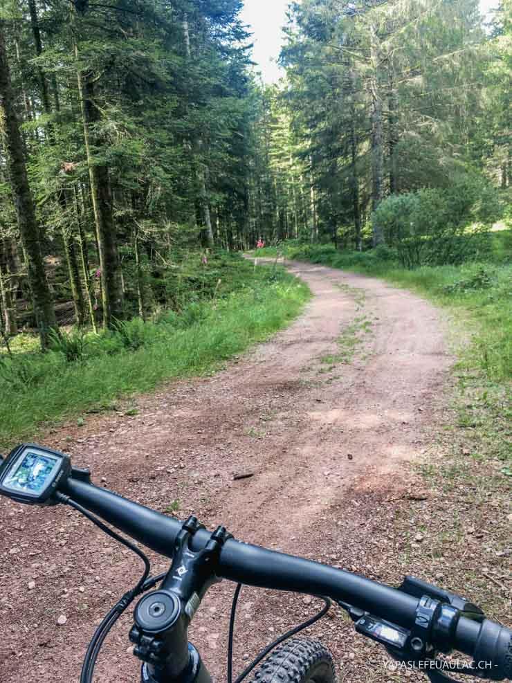 Bikepark de la Bresse: en route avec un guide!