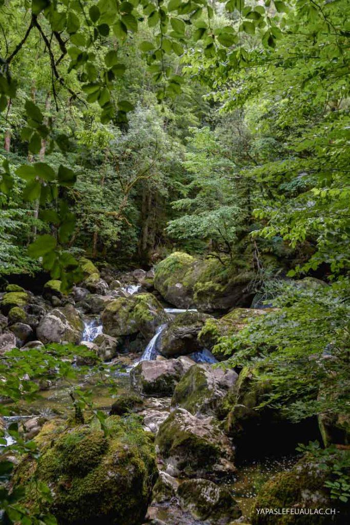 Rando à Neuchâtel - Chemin des Gorges de l'Areuse