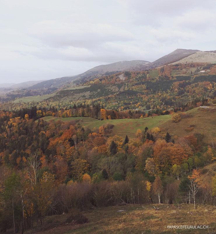 Vue sur les Vosges depuis la ferme auberge