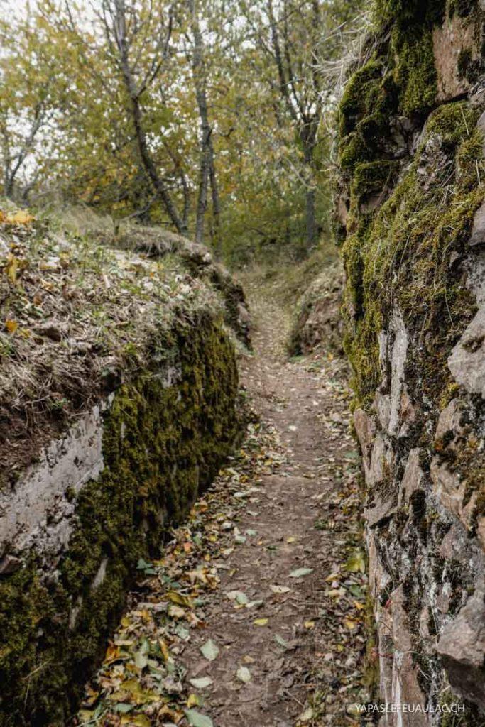 Marcher dans les tranchées de la Grande Guerre sur le Hartmannswillerkopf en Alsace