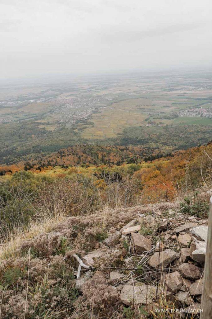 La vue depuis le Hartmannswillerkopf sur la plaine d'Alsace