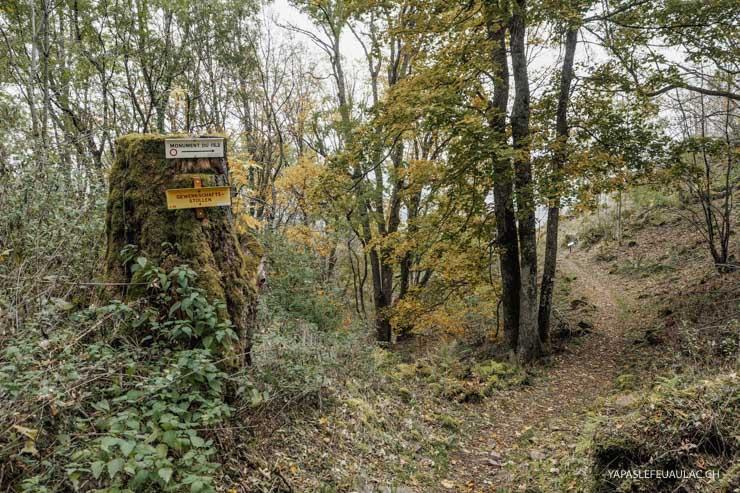Escapade d'histoire en Alsace
