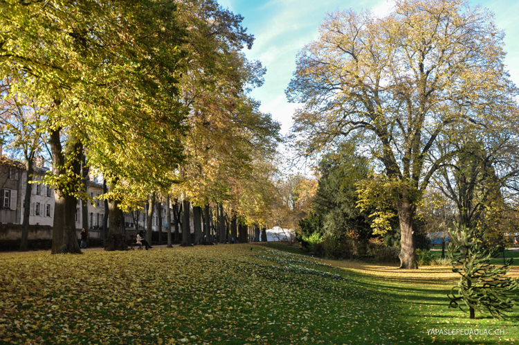 Le parc de la Pépinière à côté de la Place Stanislas