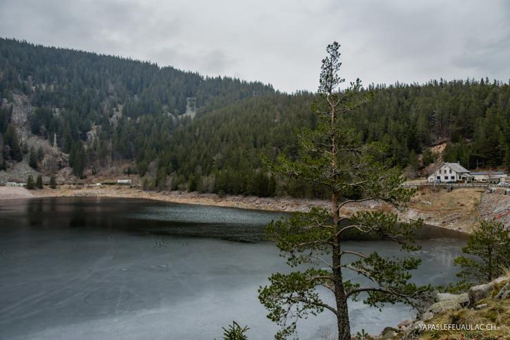 Infos balade Lac Noir Orbey