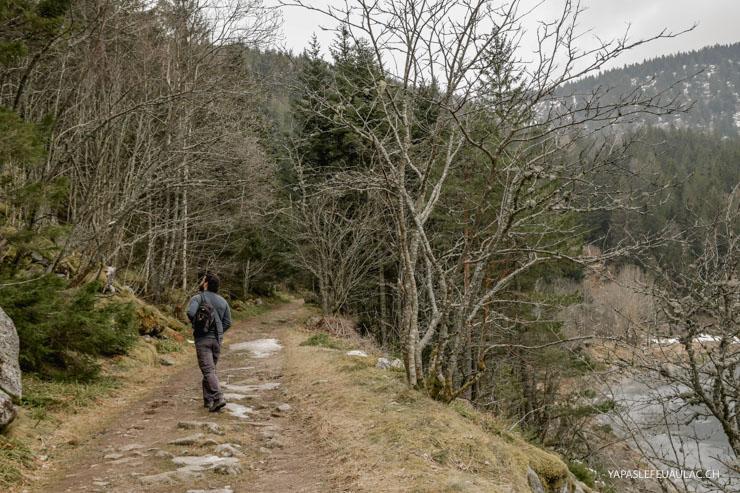 Autour du Lac Noir - escapade dans les Vosges