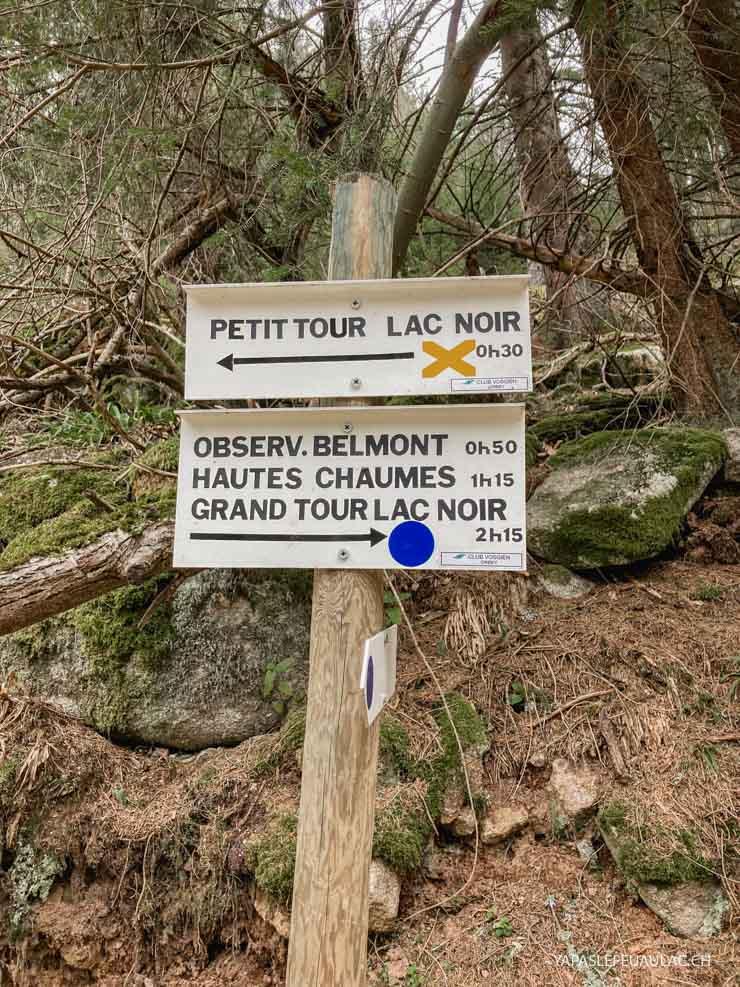 Découvrir les Vosges côté Alsace