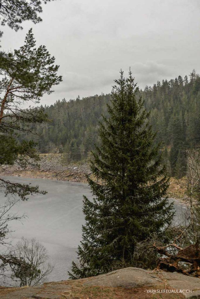 Idée de balade dans les Vosges autour d'Orbey (50 mn)
