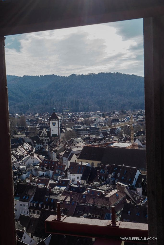 Visiter Freiburg im Breisgau: la cathédrale