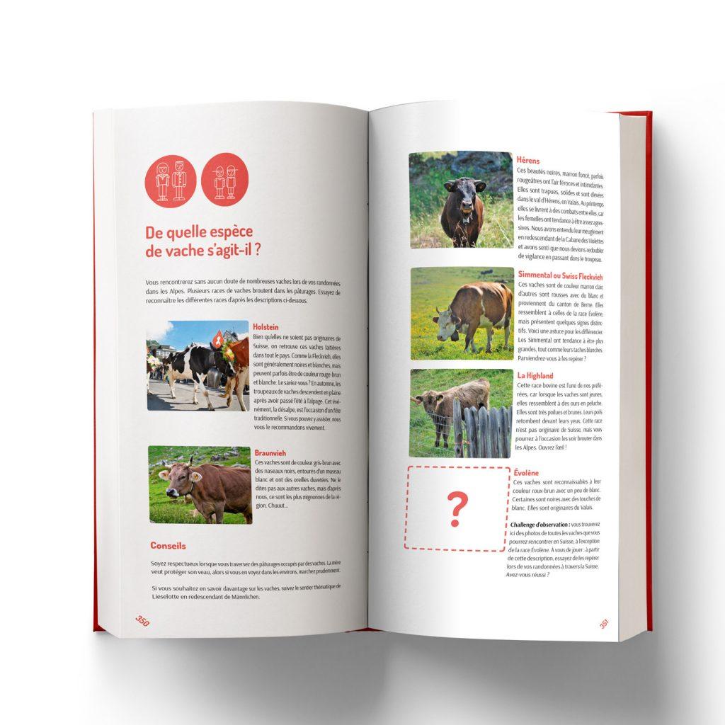 Les races des vaches suisses : savoir les reconnaître