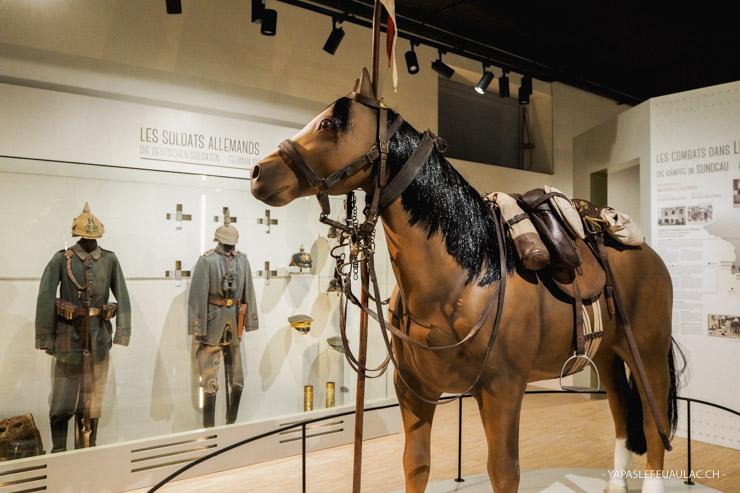 Mémorial & musée: la première guerre mondiale dans le Sundgau au Mémorial de Haute Alsace de Dannemarie